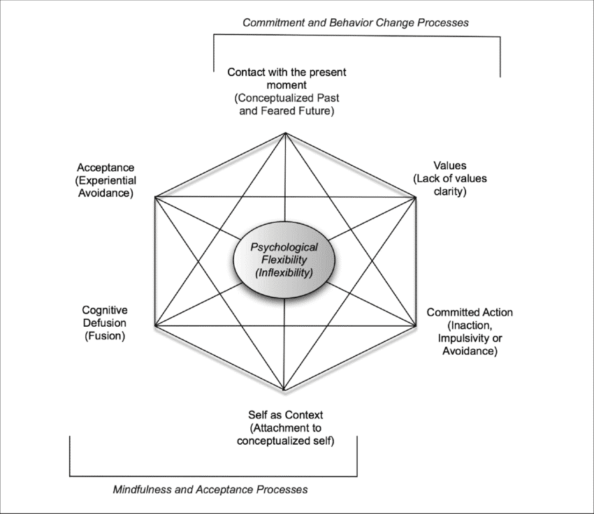 Acceptance and Commitment Therapy Hexaflex model